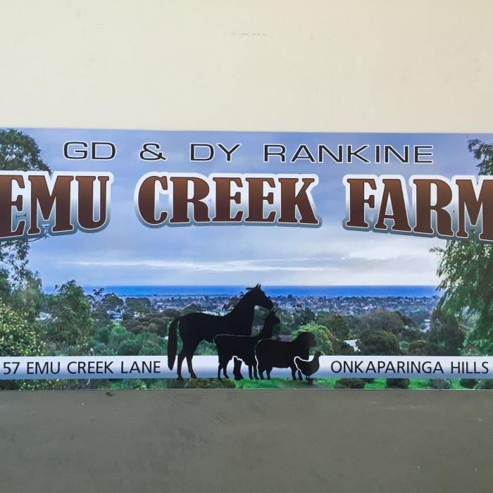 Emu Creek Farm